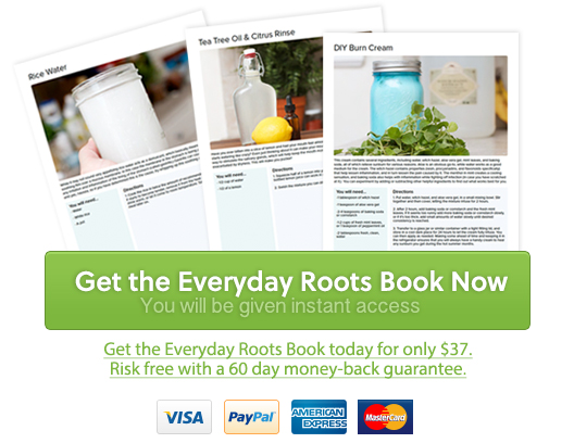 everyday-roots-book-live-a-healthier-natural-life